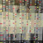 Toni Furst Smith Conscious Quilts Moving Forward